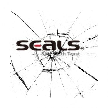 Ремонт Seals