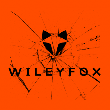 замена экрана на телефонах Wileyfox