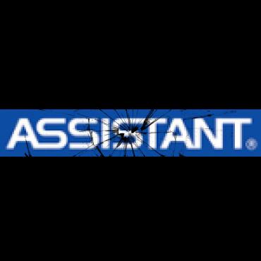 logo_assistant