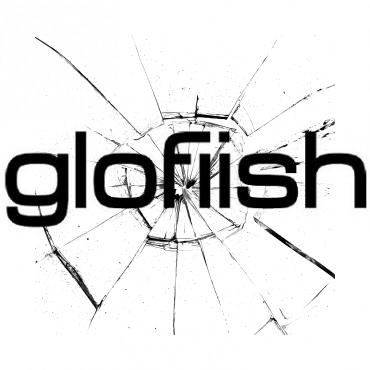 замена экрана Glofiish